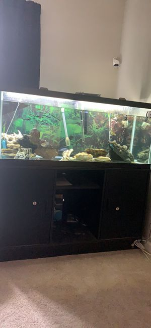 Fish tank for Sale in Lexington, KY