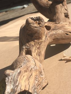 Driftwood , Branches, Aquatic , Reptile Decor for Sale in Fresno,  CA