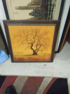 Tree for Sale in Brandon, MS