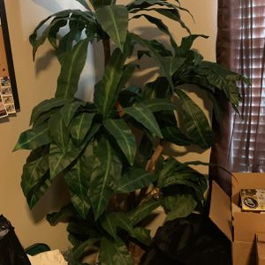 6' Faux Plant for Sale in Allen, TX
