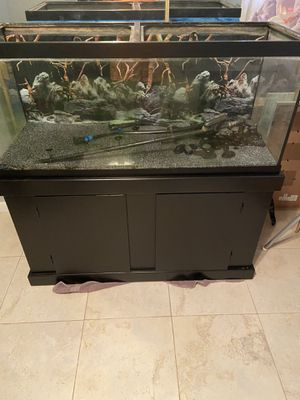 75 gal fish tank for Sale in Holiday, FL