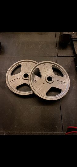 45 lb Olympic Weight Pair for Sale in Reedley, CA