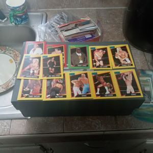 1991 Wrestling Cards for Sale in St. Petersburg, FL