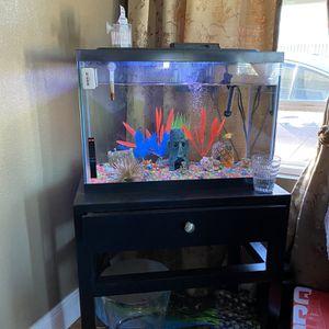 20 Gallon Fish Tank for Sale in Carson, CA