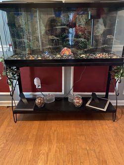 55 Gallon Fish Tank for Sale in Charlotte,  NC