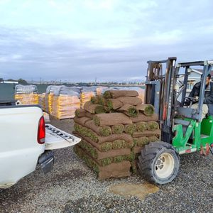 Fresh Sod Anyday for Sale in Diamond Bar, CA