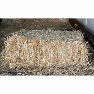 Decorative Hay 5 Bales Available *Pick up Only* for Sale in Miami, FL