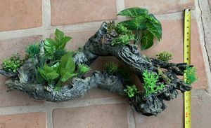 Large aquarium log with attached plants for Sale in Phoenix, AZ