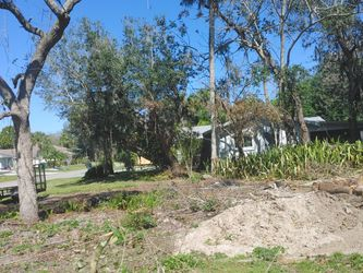 Free Fire Wood for Sale in Port Charlotte,  FL