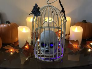 Halloween lighted doll head in bird cage for Sale in Salinas, CA
