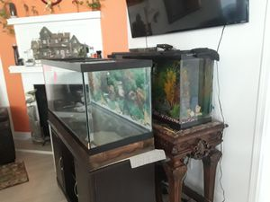 55gal Aquarium only upgrading and want to sell 55. for Sale in Westwego, LA