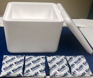 Styrofoam Cooler with Icepacks for Sale in Ithaca, NY