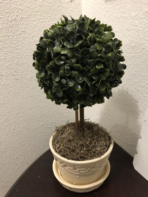 Kissing Balls Boxwood Leaves Topiary With ceramic beige vase for Sale in San Benito, TX