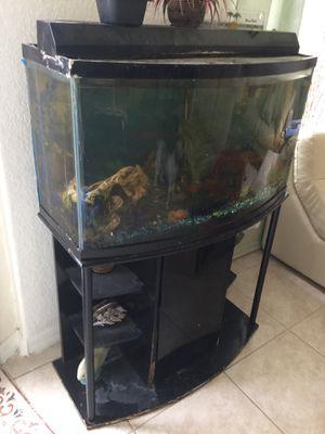 Curve fish tank for Sale in Orlando, FL