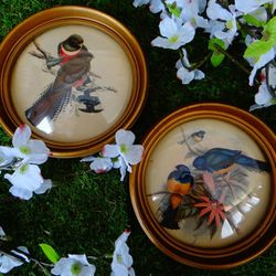 Vintage Bird Decor for Sale in Virginia Beach,  VA