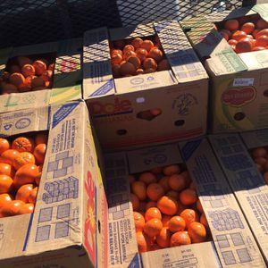 Mandarins Sale for Sale in Fresno, CA