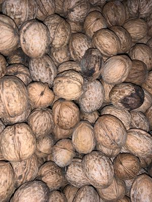 Fresh walnut sell per lbs for Sale in Modesto, CA
