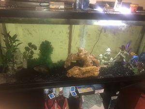 120 gallon fish tank for Sale in Oxon Hill, MD