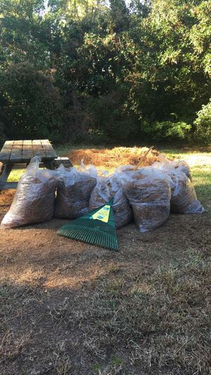 Let me rake your yard for Sale in Norfolk, VA