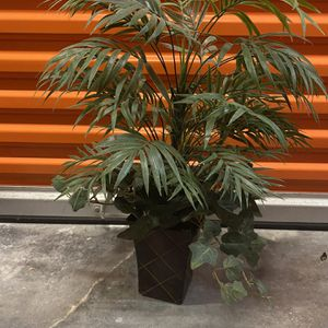 Decorative Tropical Plant for Sale in Fort Worth, TX