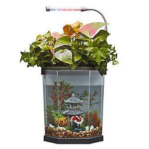 Top Fin® Aquaponics 2 Gallon Desk Aquarium for Sale in Detroit, MI