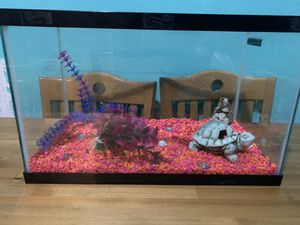 10 gallon aquarium fish tank for Sale in Brooklyn, NY
