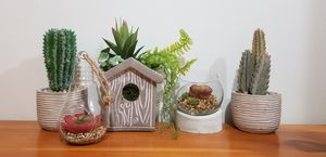 Artificial Succulents & cactus Plants Home Decor for Sale in Billerica, MA