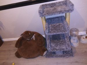 Cat tower for Sale in Dallas, TX