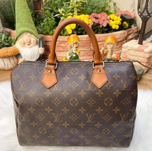 Louis Vuitton Speedy 30 for Sale in Pingree Grove, IL
