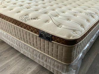 Queen Organic Cloud Comfort Europillow Top Mattress AND Boxpring for Sale in Bellflower,  CA