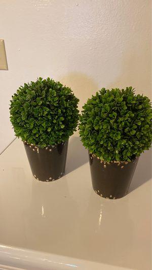 Fake Plants 1foot for Sale in Salem, OR
