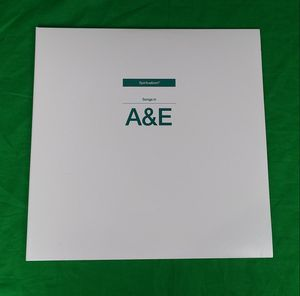 Spiritualized - Songs in A&E - double LP white records for Sale in Portland, OR