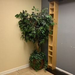 Artificial 6 Foot Ficus Tree for Sale in Euless,  TX