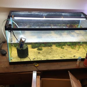 40 Gallon Breeeder Fish Tank for Sale in San Antonio, TX