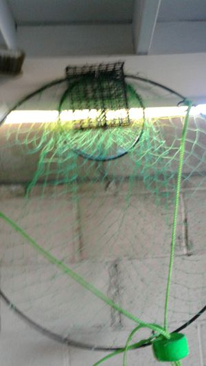 Brand new fishing Net for Sale in Los Angeles, CA