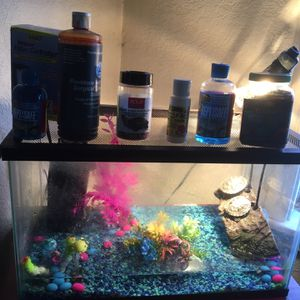 Two Red Earded Slider Turtles + Tank & Necessities for Sale in San Mateo, CA