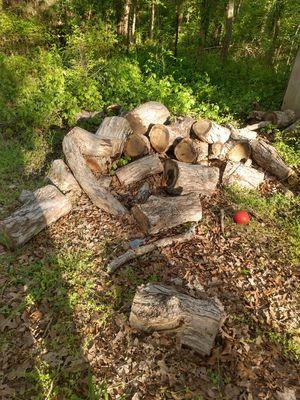 Free wood!!!! for Sale in Burlington, NC