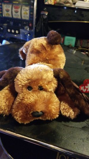 Memphis the Dog - TY Beanie Baby by TY~BEANIES DOGS for Sale in Brooklyn, NY