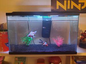 Fish tank for Sale in Elk Grove, CA