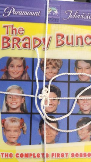 BRADY BUNCH SERIES DVDS for Sale in Chantilly, VA
