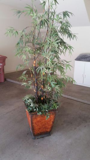 Artificial Indoor/Outdoor Plant/Tree.l for Sale in Scottsdale, AZ