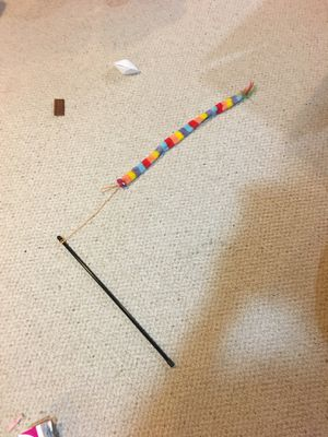 Cat snake toy for Sale in Upper Arlington, OH