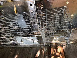 Animal trapping cage for Sale in Concord, CA