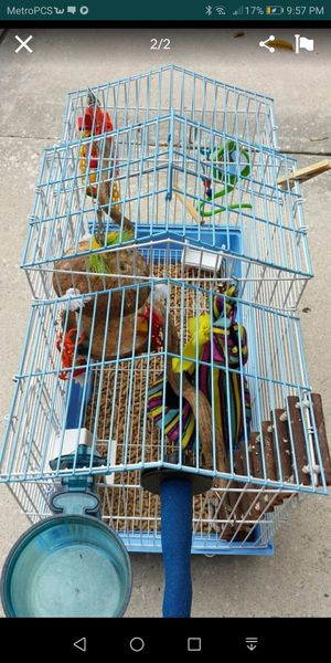 Bird cage great condition for Sale in Winter Haven, FL