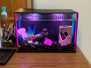 Topfin 3 gallon fish tank. for Sale in Cary, NC