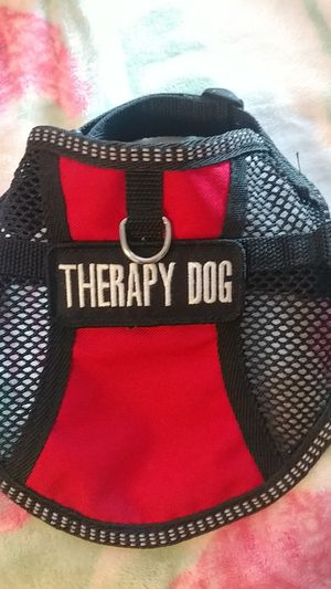 Small Therapy Dog harness for Sale in Lakeside, AZ