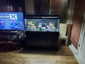 75 Gallon Fish tank Aquarium setup with the stand for Sale in Norfolk, VA