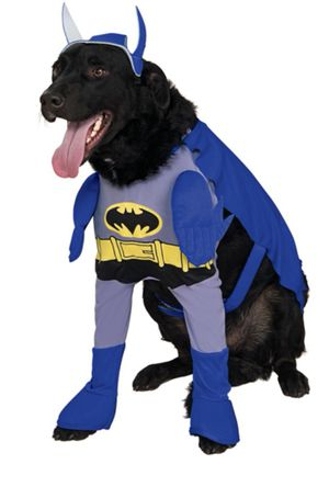 Batman Dog costume for Sale for sale  Brooklyn, NY