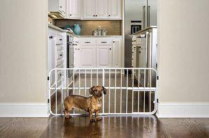 Small dog/puppy gate for Sale in Virginia Beach, VA