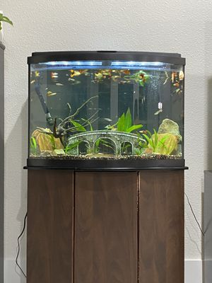 36 Gallon Fish Tank for Sale in Irving, TX